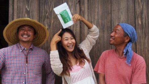石垣島の桑茶