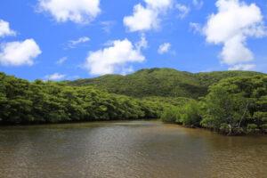 西表島 仲間川&由布島 2島周遊コース