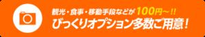 観光・食事オプションも100円から利用可能