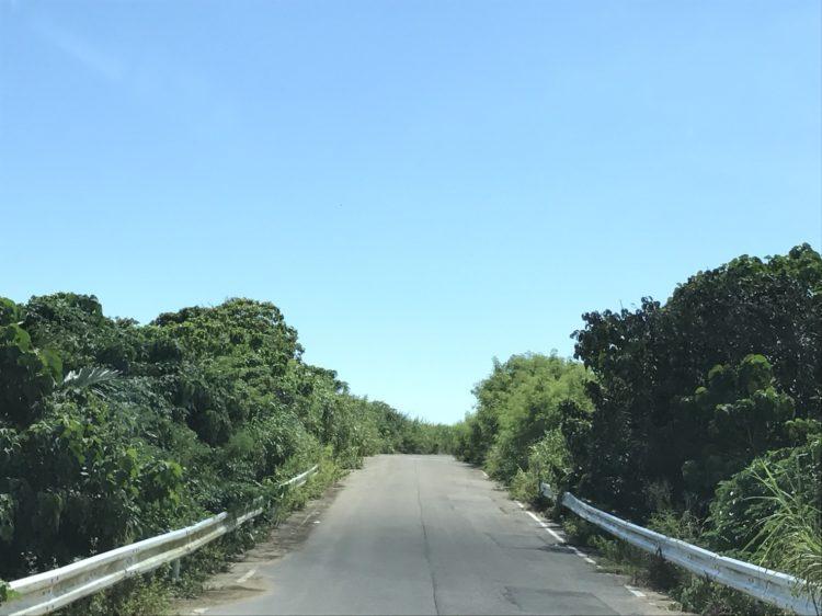 フサキビーチに向かう道