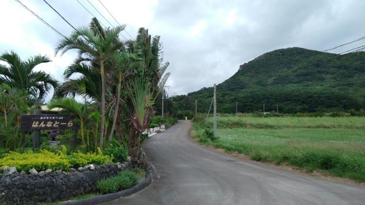 玉取崎展望台に向かう道4