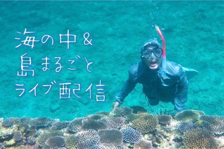 石垣島のオンラインマリンツアーの様子