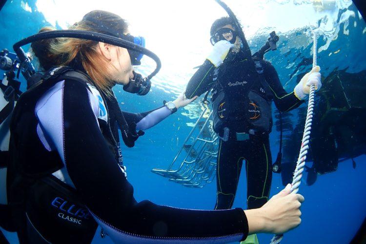 石垣島で体験ダイビングをしている様子|石垣島PR情報局