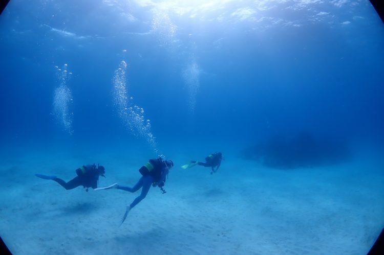石垣島でダイビングをしている様子01