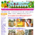 石垣島マンゴーと大玉パイン