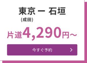 東京(成田空港)→石垣(南ぬ島石垣空港)片道4,290円〜