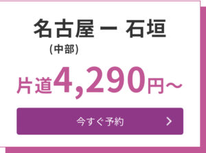 名古屋(中部国際空港)→石垣(南ぬ島石垣空港)片道4,290円〜